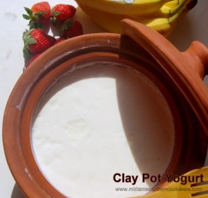 Clay Pot Yogurt