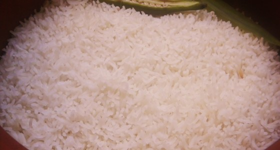 yogurt rice