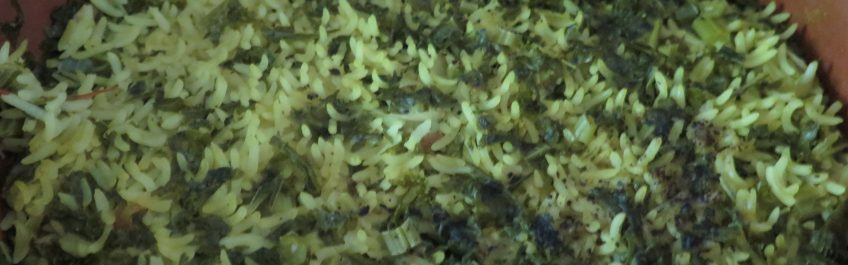 Cooking Rice Dishes